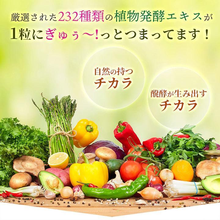 ダイエット サプリ サプリメント 直行便 60粒 30日分 コレウスフォルスコリ 植物酵素|ishokudogen-store|06
