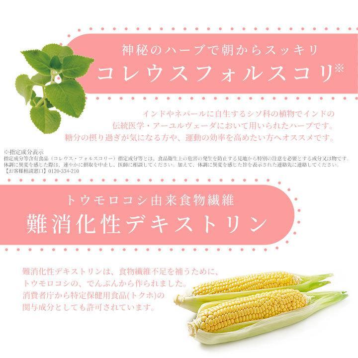 ダイエット サプリ サプリメント 直行便 60粒 30日分 コレウスフォルスコリ 植物酵素|ishokudogen-store|10