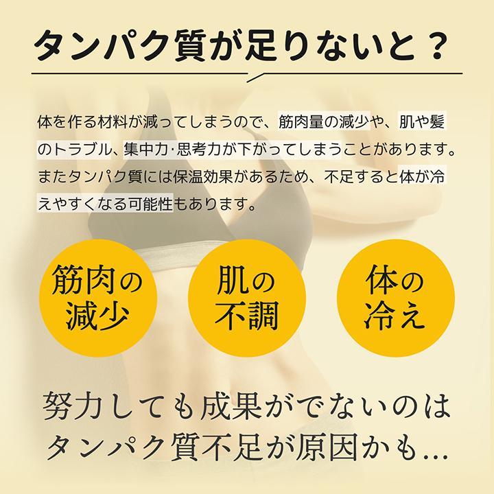 ホエイ プロテイン バナナ BMS WHEY PROTEIN 100 バナナスムージー風味 900g 30日分 甘熟王 タンパク質 女性 ISDG 医食同源ドットコム ishokudogen-store 05