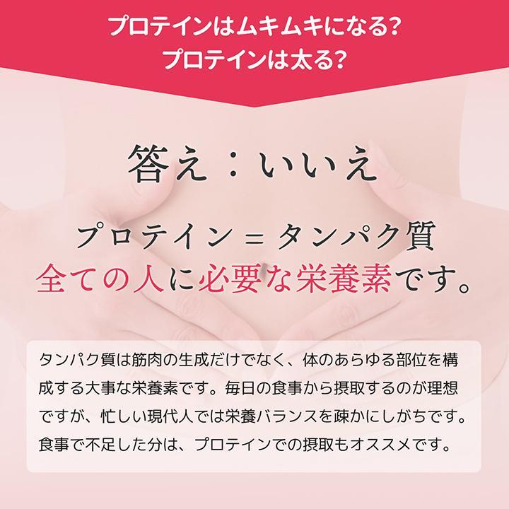ホエイ プロテイン 苺 BMS WHEY PROTEIN 100 いちごスムージー風味 900g 30日分 あまおう タンパク質 女性 ISDG 医食同源ドットコム|ishokudogen-store|04