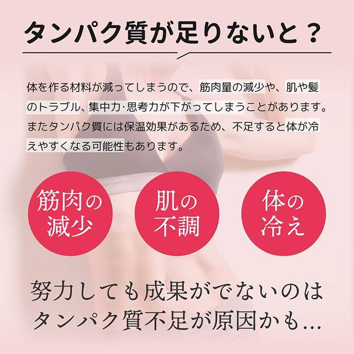 ホエイ プロテイン 苺 BMS WHEY PROTEIN 100 いちごスムージー風味 900g 30日分 あまおう タンパク質 女性 ISDG 医食同源ドットコム|ishokudogen-store|05