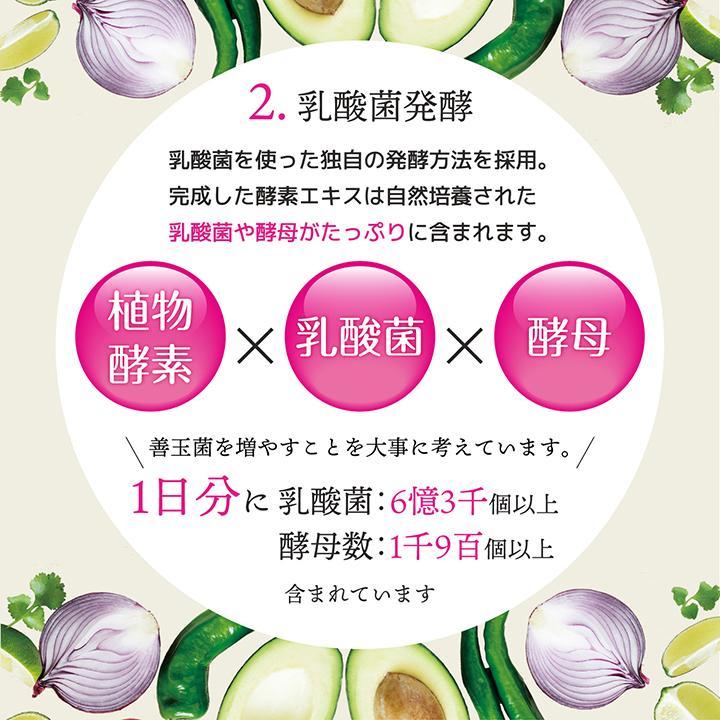 【232酵素シリーズ】 酵素 サプリ サプリメント 夜間酵素 120粒 30日分 3袋 ダイエット|ishokudogen-store|09