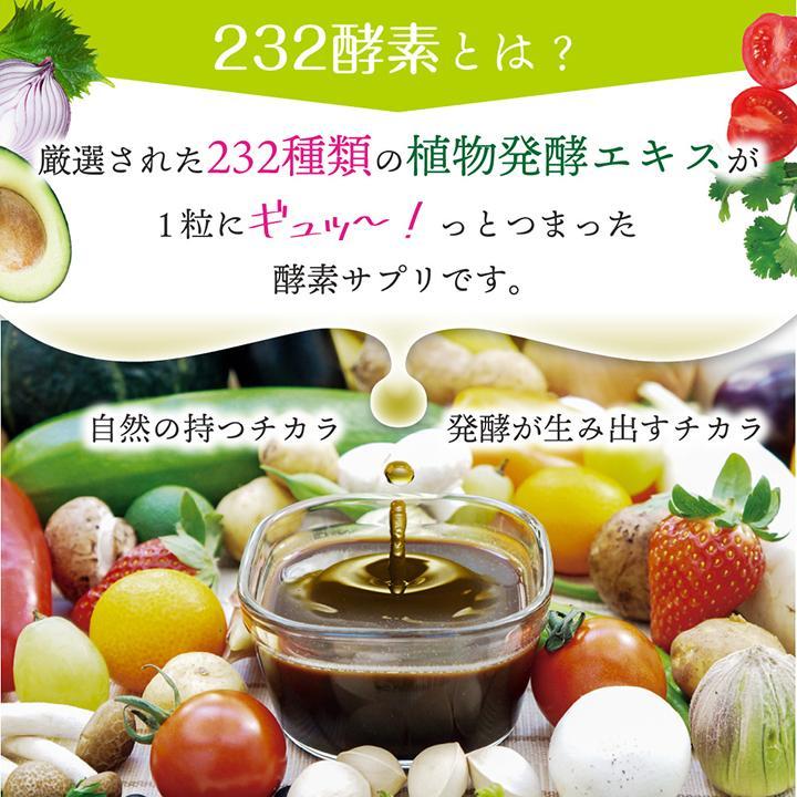 【232酵素シリーズ】 酵素 サプリ サプリメント 夜間酵素 120粒 30日分 6袋 ダイエット|ishokudogen-store|05
