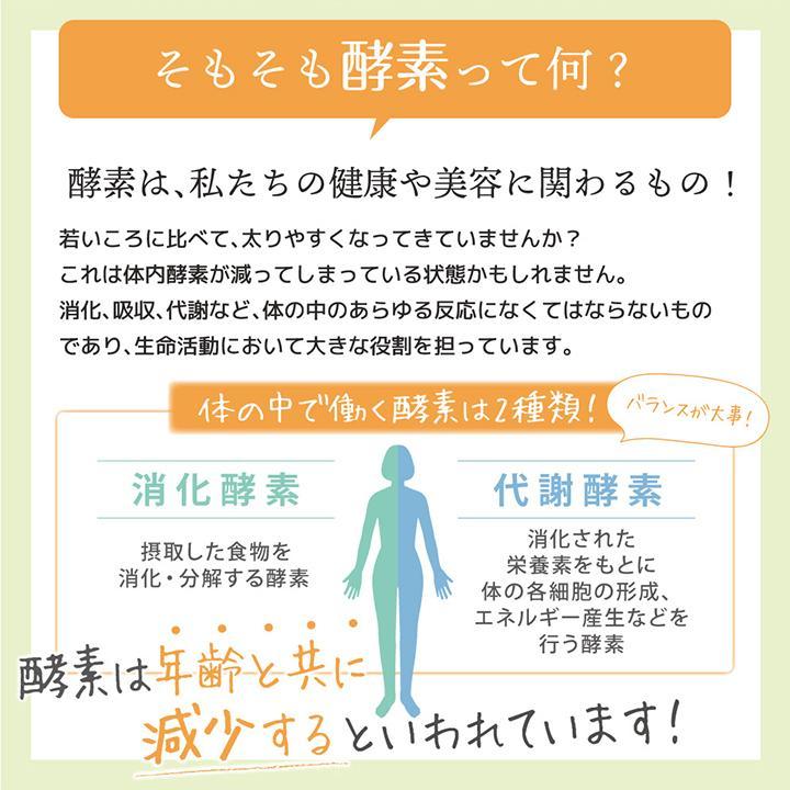 【232酵素シリーズ】 酵素 サプリ サプリメント 夜間酵素 120粒 30日分 6袋 ダイエット|ishokudogen-store|10