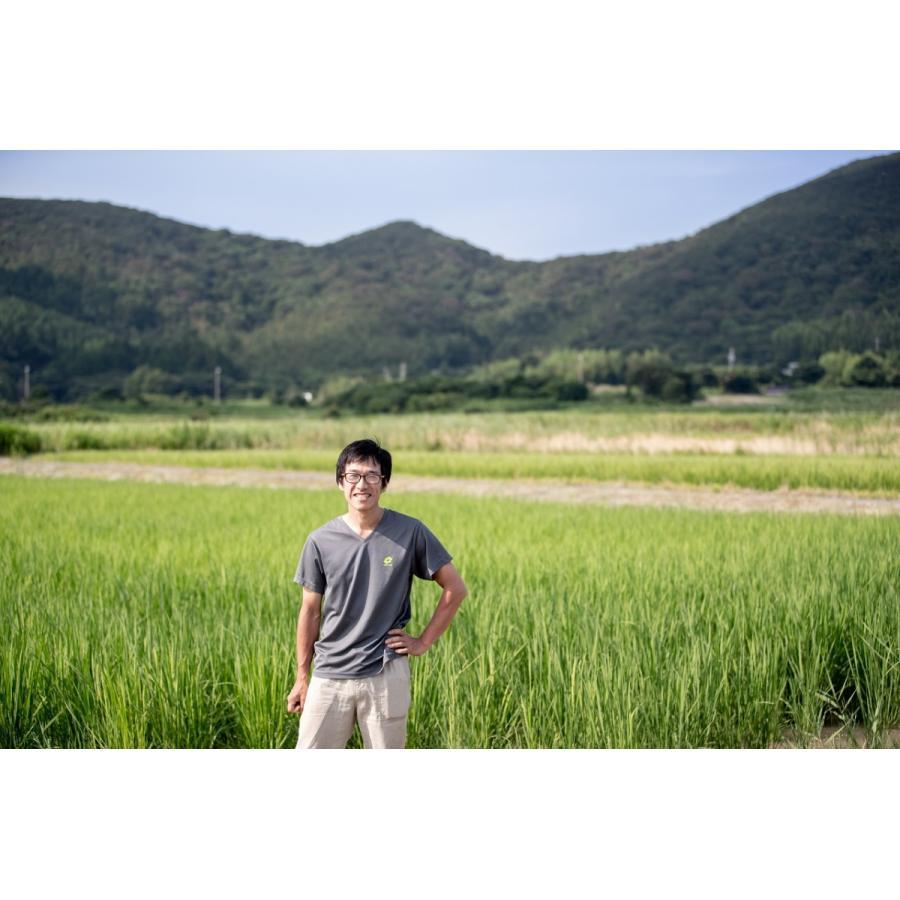 ゆたかわファームの玄米粉400g 無農薬・化学肥料不使用|iskwnouen|03
