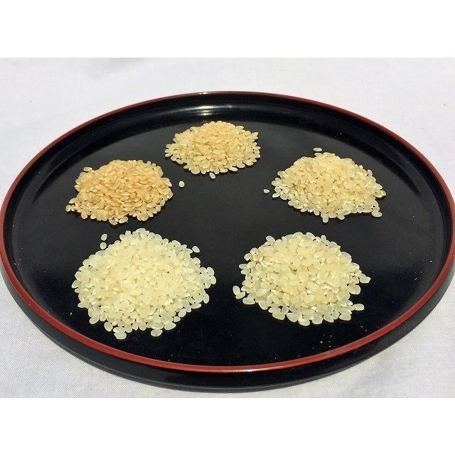 令和2年産コシヒカリ玄米 2kg 農薬・化学肥料不使用 精米無料(3分・5分・7分・白米)|iskwnouen|04