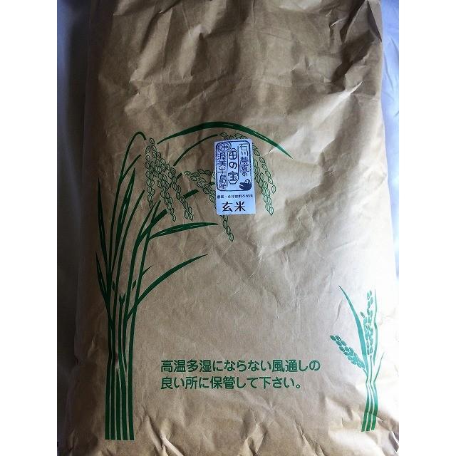 令和2年産コシヒカリ玄米 30kg 農薬・化学肥料不使用 精米無料(3分・5分・7分・白米)|iskwnouen|03