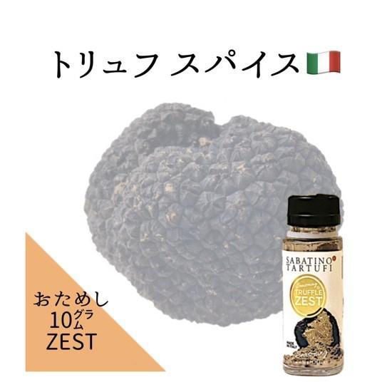 スパイス トリュフゼスト お試しサイズ 10g ポイント消化 サバティーノ社 イタリア産 italiatanicha2