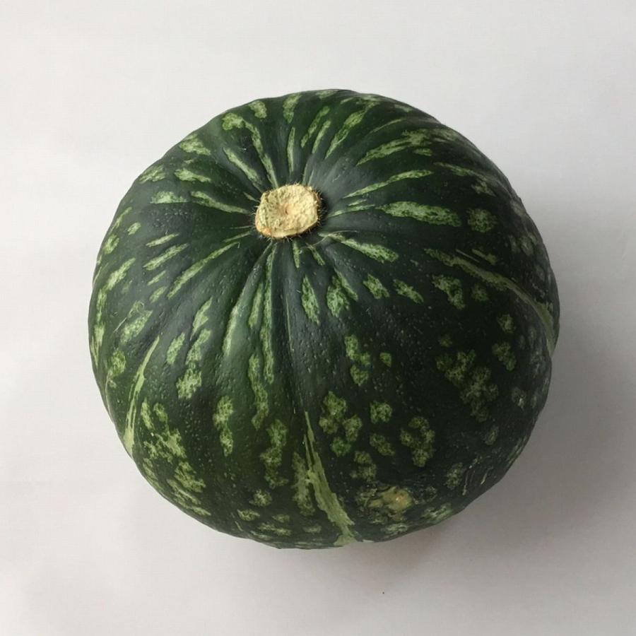 かぼちゃ 1個 売り出し 福岡産 海外限定