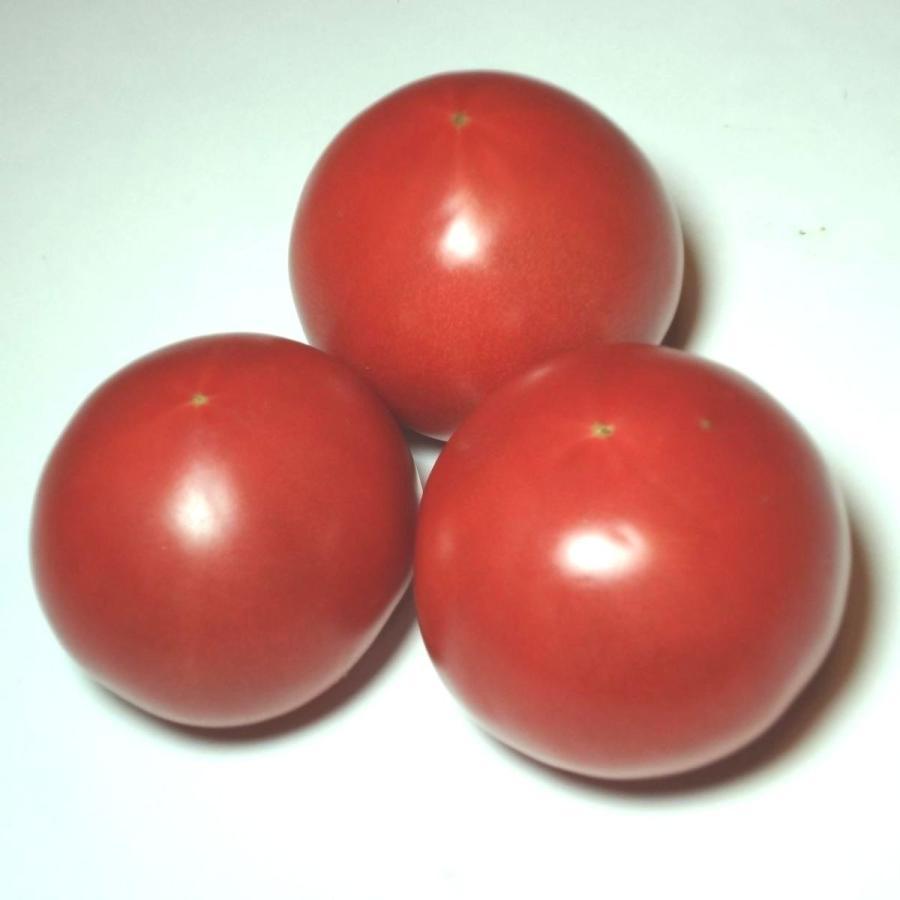 トマト 返品送料無料 3個 約400g 福岡 熊本産r (人気激安)