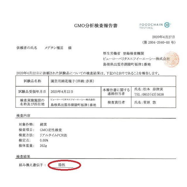 【無農薬栽培】綿の種「赤綿」(30粒)※栽培説明書付き|itomedetashi|05