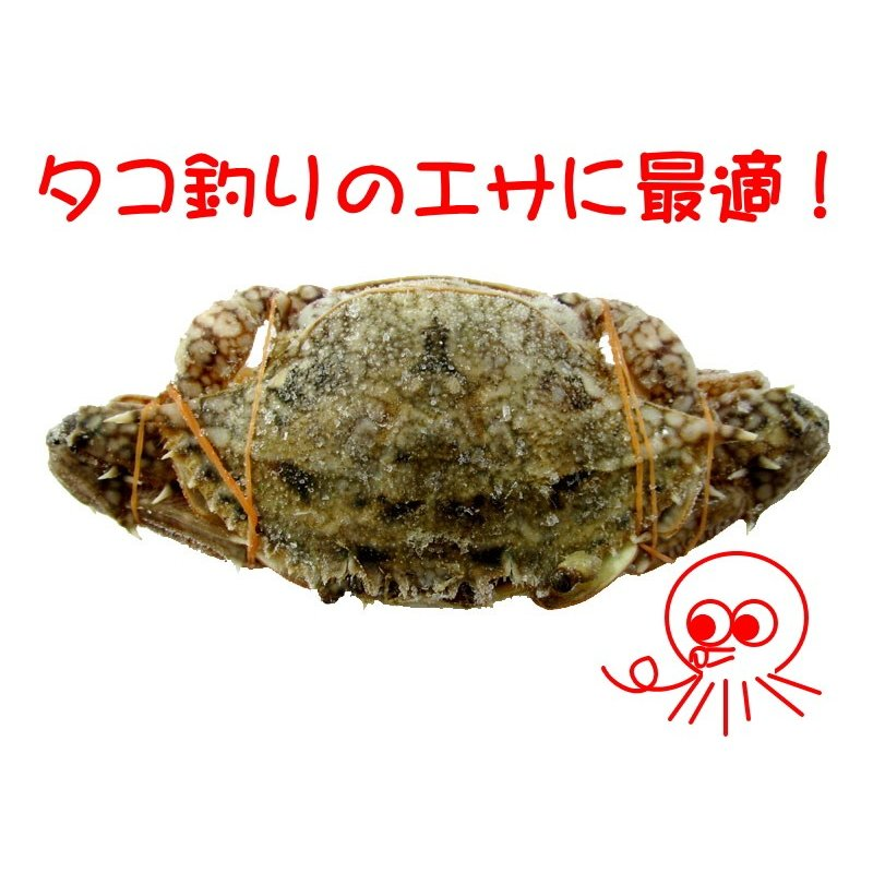 冷凍 ワタリガニ 約15cm タコ釣り|itoturi