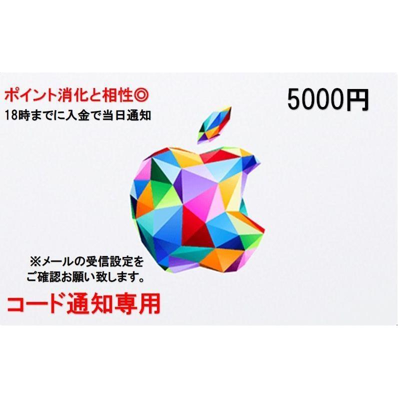 新色追加 iTunes Card アイチューンズ カード 5000円券 商舗 Apple コード通知