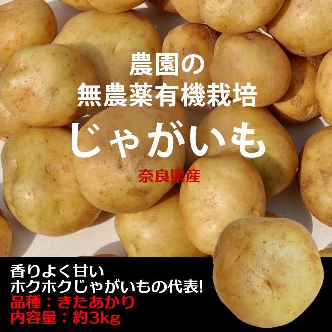 新じゃがいも 無農薬有機肥料栽培 きたあかり 奈良県産 約3kg 激安通販販売 新作アイテム毎日更新