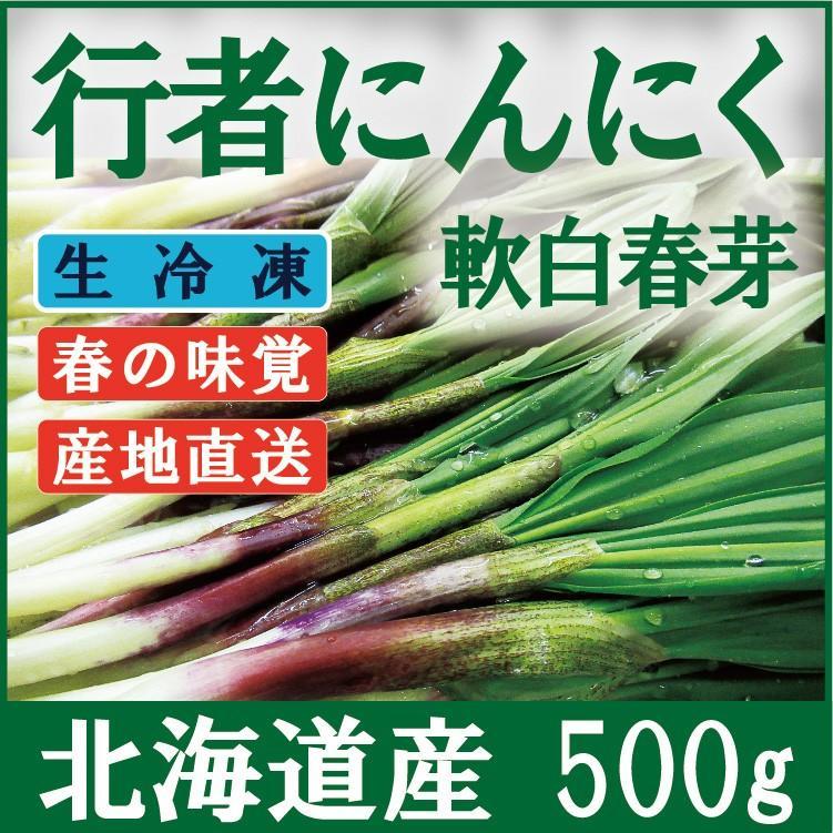 行者にんにく 芽 急速冷凍 北海道産 ギョウジャニンニク 超特価 醤油漬けや餃子に最高 ギフト 500g 100g×5袋