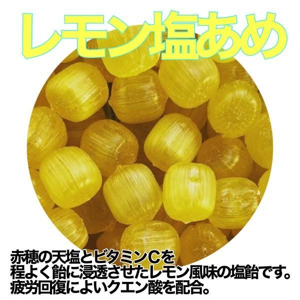 接触冷感 あじさい 刺繍 レモン塩あめ セット 〜アメトマスク〜|iwaiseika|05