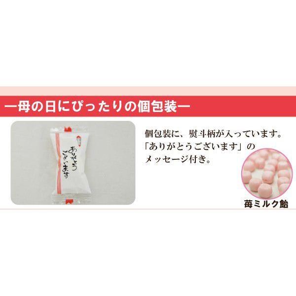 母の日キャンディーパック「ありがとうメッセージ・カーネーション造花付」 iwaiseika 02