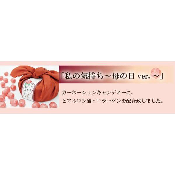 母の日ギフト 私の気持ちカーネーションキャンディー|iwaiseika|02