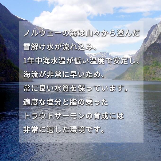 甘塩トラウトサーモン 厚切り10切 送料別 お取り寄せグルメ|iwamatsu-salmon|05
