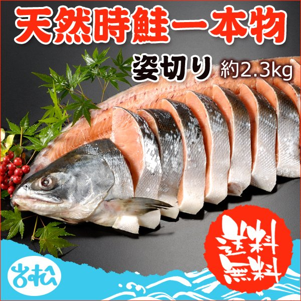 新作続 天然時鮭 一本物姿切り 送料無料 お取り寄せグルメ 年中無休