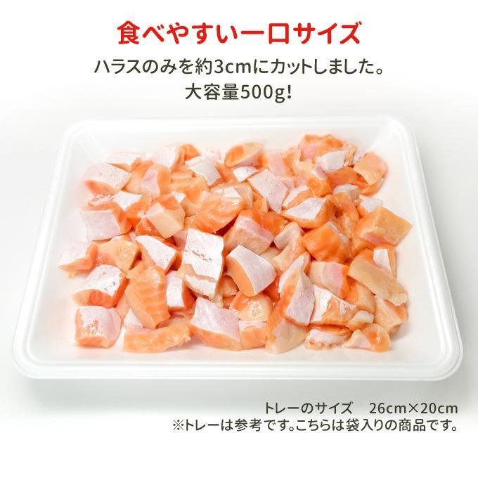 訳あり刺身サーモン切り落とし1kg 500g×2パック 注意:脂強め トラウトサーモンハラス切り落とし 送料無料 お取り寄せグルメ|iwamatsu-salmon|08