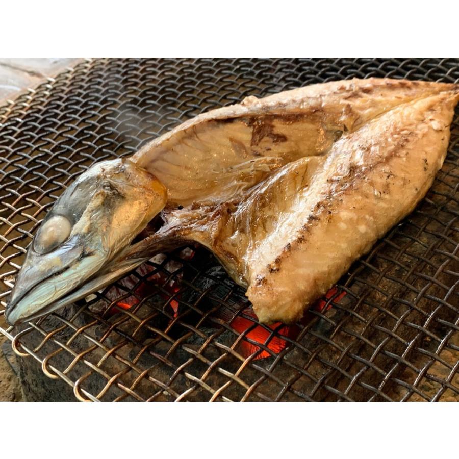 塩鯖 骨のある奴 完全送料無料 国産 冷凍 お二人で食べられます EPA ビタミンDが豊富 DHA 無料