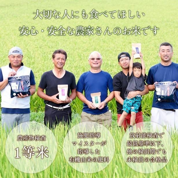 令和3年産 米 5kg 白米 福島県 中通産 天のつぶ 精白米5kg 小分け  お米 ふくしまプライド。体感キャンペーン(お米)|iwaseno-kinnsyuumai|02