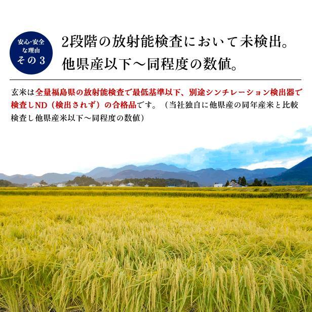 令和3年産 米 5kg 白米 福島県 中通産 天のつぶ 精白米5kg 小分け  お米 ふくしまプライド。体感キャンペーン(お米)|iwaseno-kinnsyuumai|04