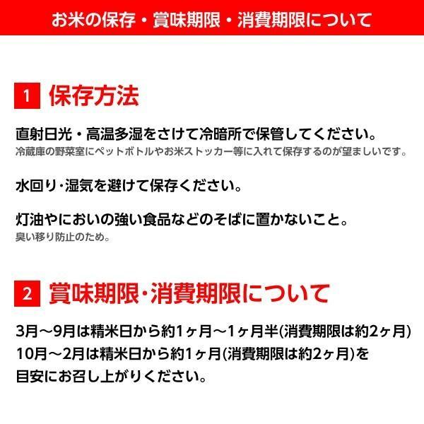 令和3年産 米 5kg 白米 福島県 中通産 天のつぶ 精白米5kg 小分け  お米 ふくしまプライド。体感キャンペーン(お米)|iwaseno-kinnsyuumai|09