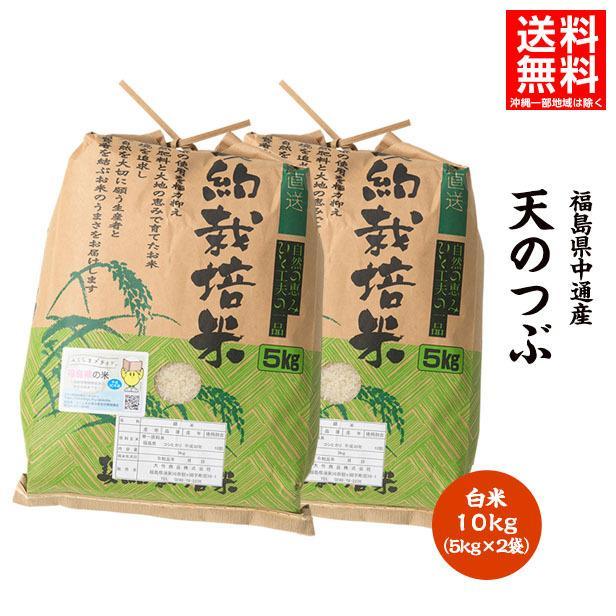 令和2年産 米 10kg 白米 福島県 中通産 天のつぶ 精白 (5kg×2袋) 小分け お米ふくしまプライド。体感キャンペーン(お米)|iwaseno-kinnsyuumai
