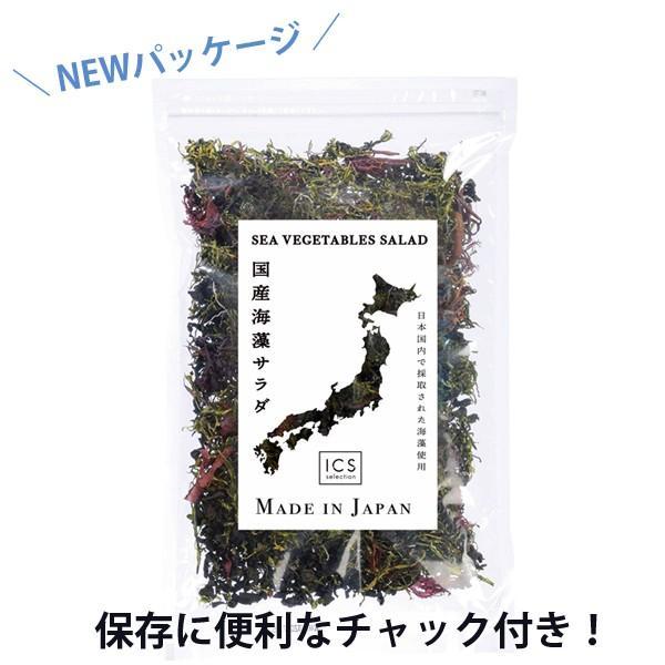 国産海藻サラダ 乾燥100g ICSselection  わかめ 茎わかめ 昆布 ふのり 赤とさか|ix-ix|02