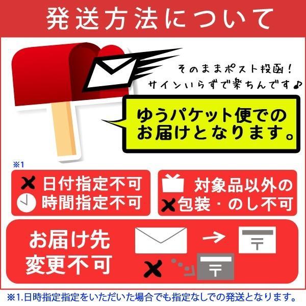 古式手延べ製法 雲仙手延べそば絹の輝 200g×4袋 メール便送料無料 ix-ix 08