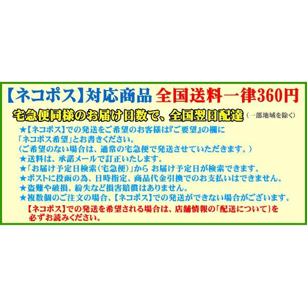 JARLオリジナル規格 アマチュア無線局 QSLカード 100枚セット【ネコポス】|izu-tyokkura|04
