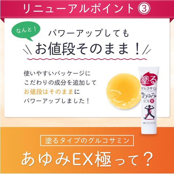 グルコサミン10倍 塗るグルコサミン コンドロイチン クリーム あゆみEX極み 100g 約30日分 j-medix 05