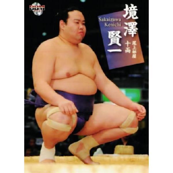 BBM 大相撲カード 2011 レギュラ...