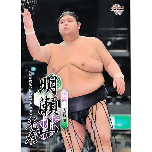 BBM 大相撲カード 2013 レギュラ...