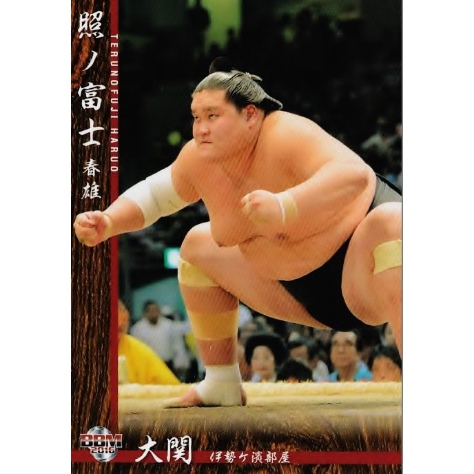 BBM 大相撲カード 2016 レギュラー 04 照ノ富士 春雄 :16SUMO-04 ...