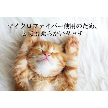 毛布 日本製 保湿成分配合 モイスチャー加工 ミニチュアダックスフンド柄 ハーフケット  メーカー直販 japan-blanket 04