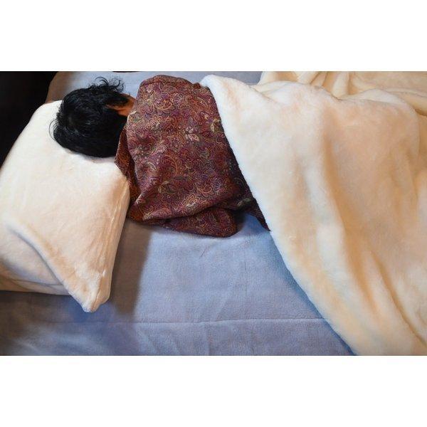 毛布 日本製 ウール毛布(毛羽部分) オーストラリアメリノ とろける肌触り ウォッシャブル|japan-blanket|07