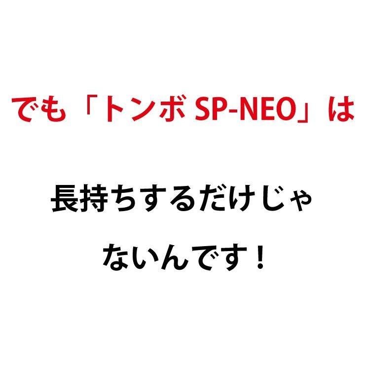 トンボ SP-NEO ひのきタイプ 叩ける!グラウンド整備 軽量スチール + 木製 レーキ 80cm幅  野球 japan-eyewear 07
