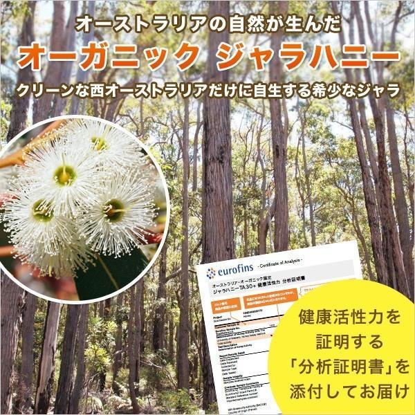 初回限定 ジャラハニー TA 30+ 30g  マヌカハニーと同様の健康活性力 オーストラリア・オーガニック認定 はちみつ 蜂蜜 honey 送料無料|jarrah|04