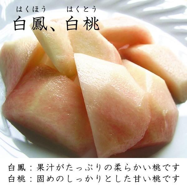 山梨産 桃 ご自宅用 1Kg 5〜6個入り|jerichojericho|03