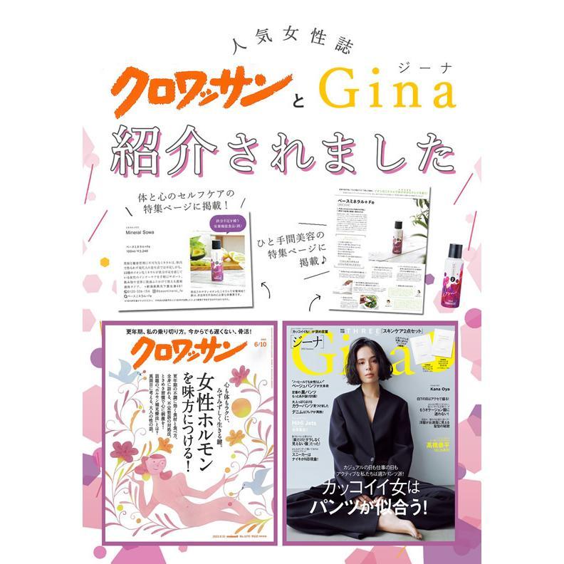 ベースミネラル+Fe 濃縮タイプ 100ml 栄養機能食品 鉄 鉄分 サプリ jes-mineral-honpo 04