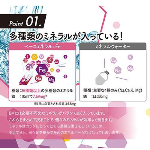 ベースミネラル+Fe 濃縮タイプ 100ml 栄養機能食品 鉄 鉄分 サプリ jes-mineral-honpo 07