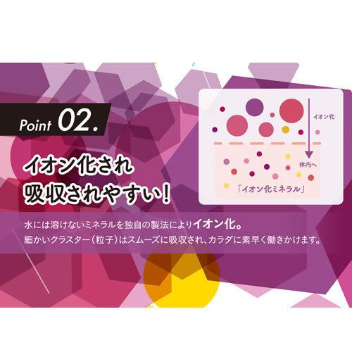 ベースミネラル+Fe 濃縮タイプ 100ml 栄養機能食品 鉄 鉄分 サプリ jes-mineral-honpo 08