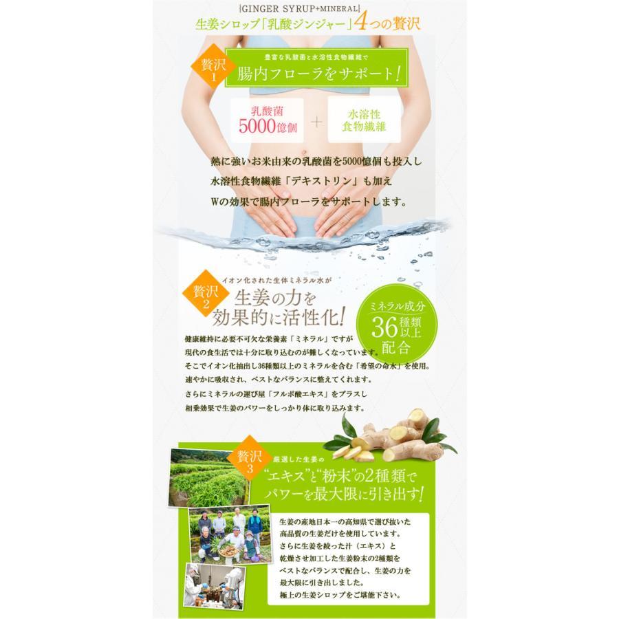 乳酸菌入り 生姜 シロップ 乳酸ジンジャー 300ml|jes-mineral-honpo|05