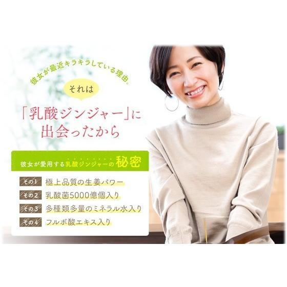 生姜シロップ 乳酸ジンジャー 10ml×3包 お試し サンプル 乳酸菌 ジンジャーシロップ|jes-mineral-honpo|04