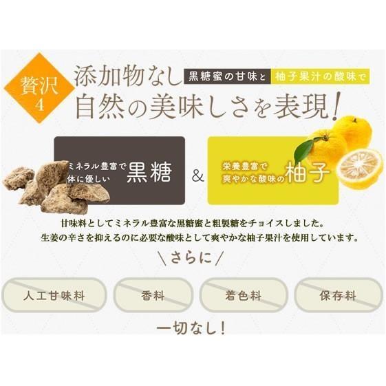 生姜シロップ 乳酸ジンジャー 10ml×3包 お試し サンプル 乳酸菌 ジンジャーシロップ|jes-mineral-honpo|06