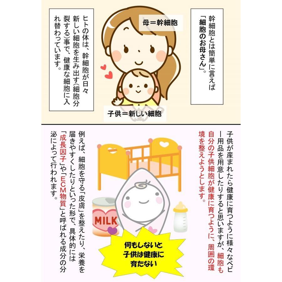 【ヒト幹細胞エキス15%配合】SMPL セルポテンシャル  / ヒト幹細胞培養液 美容液 ハリ くすみ 乾燥 jobikai 03