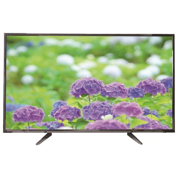 (標準設置無料 設置Aエリアのみ) WIS 55型フルハイビジョンLED液晶テレビ (別売USB HDD録画対応) AS-03F5502TV 返品種別A